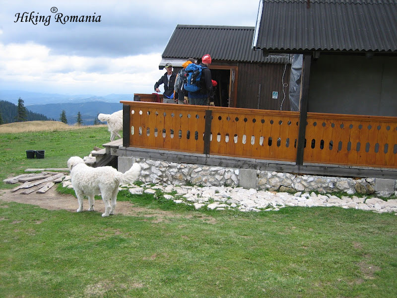 Holiday in Romania